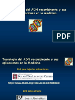 Ppt Biología Molecular 2015