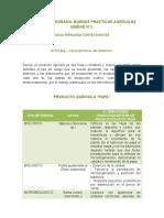 282135201-Actividad-1-Buenas-Practicas-Agricolas.doc