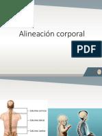 alineación corporal-circuitos