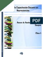 Anexos de Anatonía y fisiología - Sinapsis.pdf