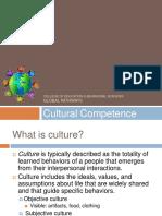 Cultural Intelligence 2