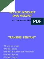 Vektor & Rodent