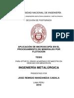 manzaneda_cj.pdf