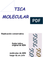 geneticamolecular