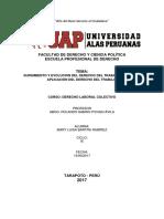 Surgimiento y Evolucion Del Derechodel Trabajo, Ámbito de Aplicación Del Derecho Del Trabajo