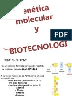 Genetica Molecular y Biotecnologia