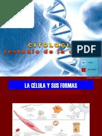 Citología 3