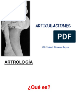Articulaciones de miembros (veterinaria)