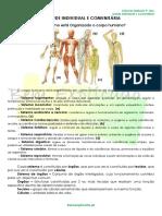 1 - Ficha Informativa - Saude Individual e Comunitária.pdf