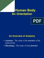Anatomy Directional Ters (3)