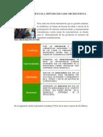 ANÁLISIS FODA MICROCUENCA DEL RIO BLANCO.pdf