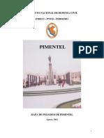 pimentel_mp.pdf