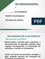 Cultura organizacional paradigmas, conceitos, elementos e dinâmica - Parte II.pdf