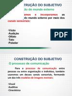Trabalho, subjetividade e saúde psíquica - Parte I.pdf