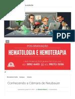 Conhecendo a Câmara de Neubauer Biomedicina Padrão[1]