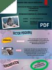 Grupo n 7 Sector Pesquero Imprimirrrr