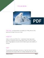 Polar Bear Projecto Ingles