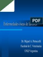 Enfermedades Oseas de Las Aves[1]
