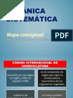 Mapa Conseptual de Botanica (1) - Copia