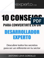 desarrollador-experto.pdf