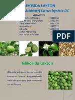 GLIKOSIDA LAKTON ppt