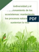 Reflexión Tema Biodiversidad
