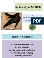 The Breeding Biology of Swiftlets