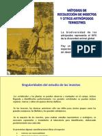 154715859-Tecnicas-de-muestreo-en-Insectos.pdf