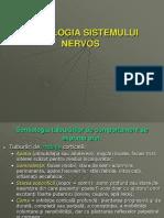 semiologia + examinarea SN