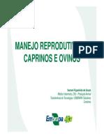 manejoreprodutivodecaprinoseovinosembrapa-150924112501-lva1-app6891.pdf