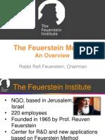 Feuerstein Overview  Ravi Feuerstein.pdf