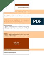 Programa Anual de Auditoria
