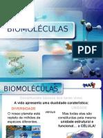 o Grande Pp Biomoléculas