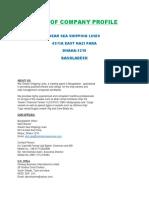 Dream Sea Company Profile - Copy