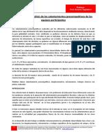 117) Mundial 2014 Analisis de Los Calentamientos Precompetitivos (h. Tagliaferri-ceefis)