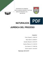 Naturaleza Juridica Del Proceso Procesal Civil