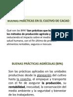 BPA Guayakil.pdf
