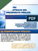TEMA 4. ASPECTOS CONCEPTUALES DEL PRESUPUESTO P�BLICO.