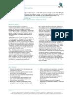 flyer - End-to-End Encryption - EN.pdf