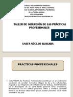 Taller de Induccion Practicas Profesionales