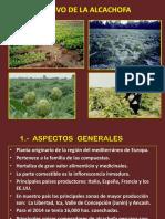 Presentación de La Alcachofa
