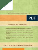 Unidad Ii_ Etapas Del Desarrollo Humano y Ciclo Vital.