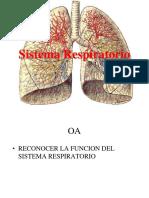 aparato-respiratorio2017
