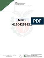 Pesquisa de Nire-176826378.pdf