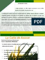 Diapositivas Fabricacion Del Azucar