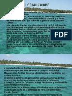 Colombia Caribe Danny Tronco de Trabajo