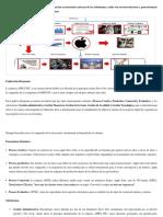 Ejemplo Idiograma (Primer Punto de La Actividad)