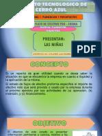 2.3.-FLUJO-EFECTIVO-PRO-FORMA-bueno.pptx