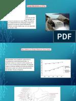 Energia Hidroelectrica en El Peru