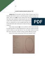 LP 2- Indicator CAO.doc